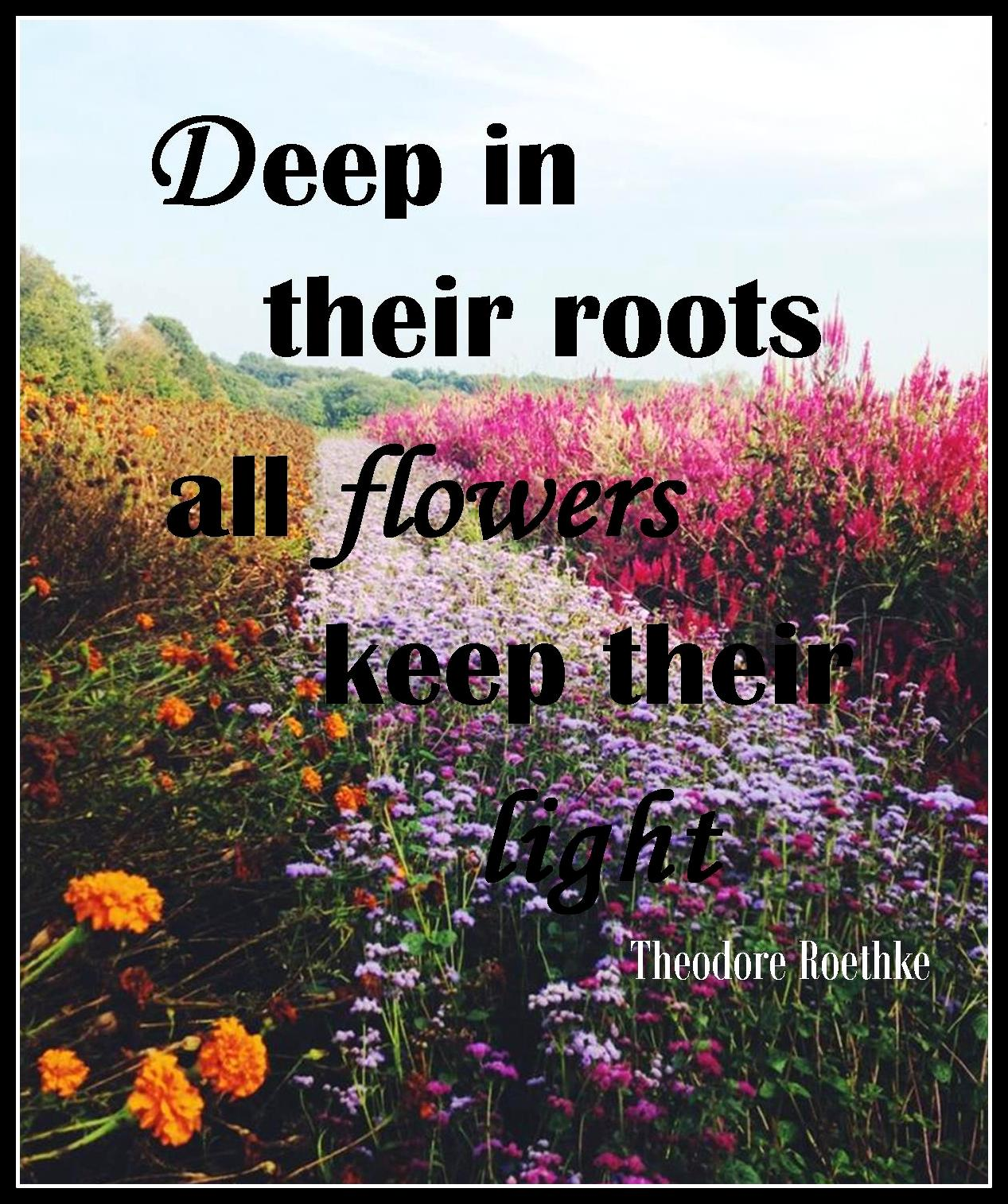 flowerquote1
