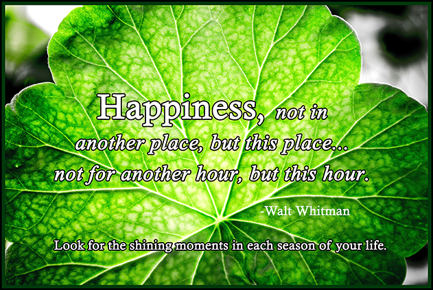 happiness quote1